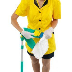 Мопы для влажной уборки